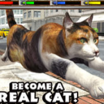 Ultimate cat simulator game