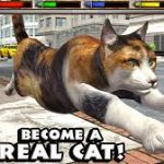 cat simulator download free